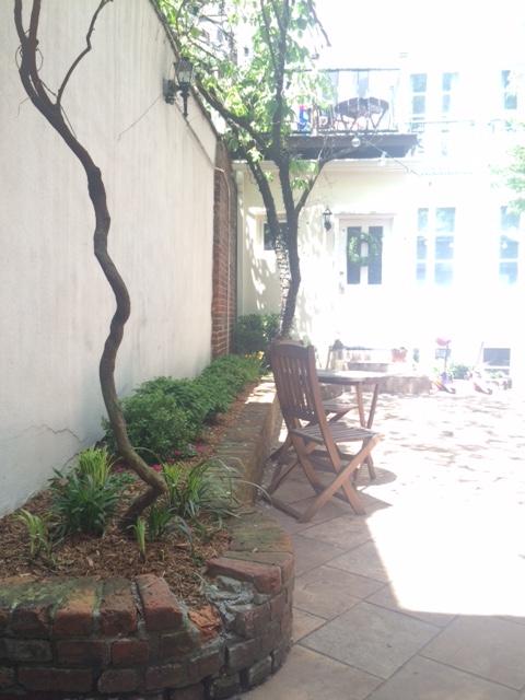 7 Leroy Street garden